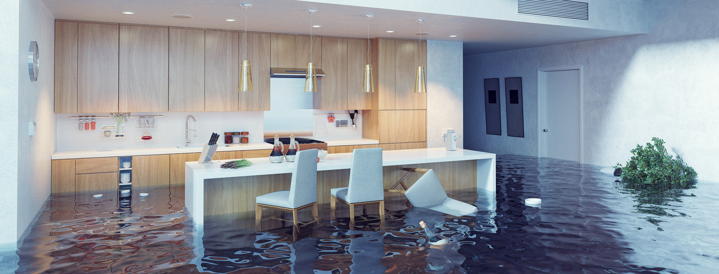 Flooded Kitchen